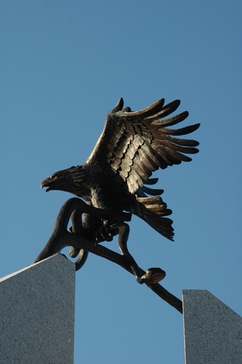 Another view of the eagle from below