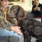 "Alex pays close attention to the smallest details. In this case, ""Lady,"" a Boykin spaniel, models for Alex."